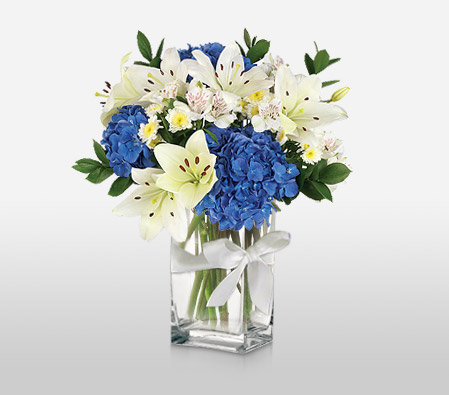 Glory<br><font color=red> Sale 10% Off</font><br><font color=red>Complimentary Clear Vase</font>