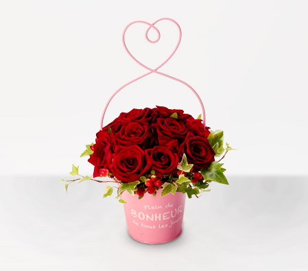 Hirosaki Blossoms <Br><Font Color=Red>Sale $20 Off - One Dozen Roses </Font>