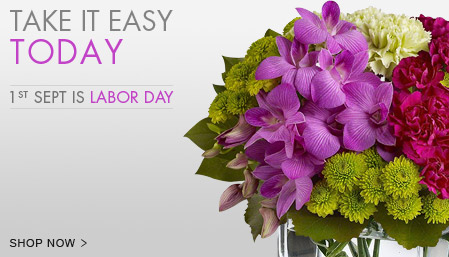 View our Labor Day Collection