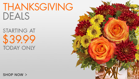 View The Thanksgiving Collection