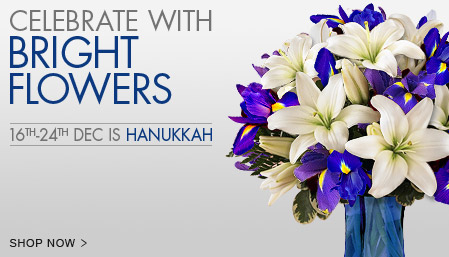 View The Hanukkah Collection