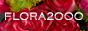 Flora2000 affiliate program